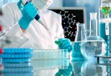 Cancro, un batterio marino nuovo alleato nella lotta ai tumori