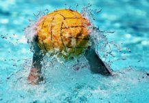 La Federazione Italiana Nuoto premia le società e atleti campani 2019