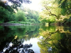 lago di silent pool