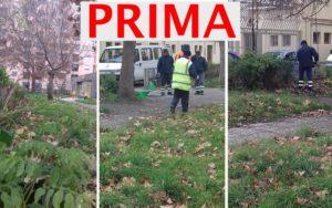 prima-1