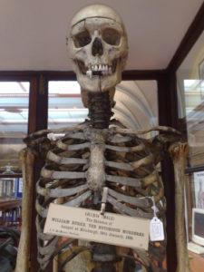 skeleton_002