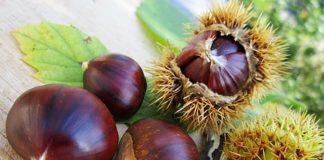 Le castagne in inverno aiutano la nostra salute. Benefici e ricette