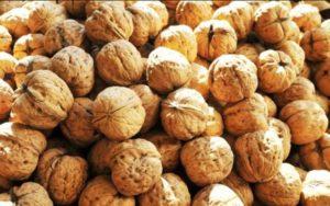 Colesterolo, i fitosteroli come beneficio