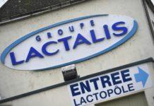 Lactalis, latte in polvere a rischio salmonella. Nessun allarme in Italia.