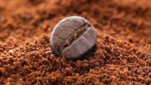Il caffè, benefici e rischi dell'amata bevanda degli italiani