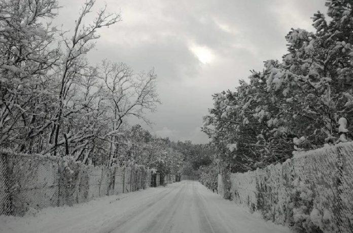 Allarme maltempo. Tempesta di neve sul Vesuvio: Bus e auto bloccate