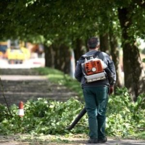 Furbetti del cartellino: 12 giardinieri stipendiati dal Comune indagati a Napoli