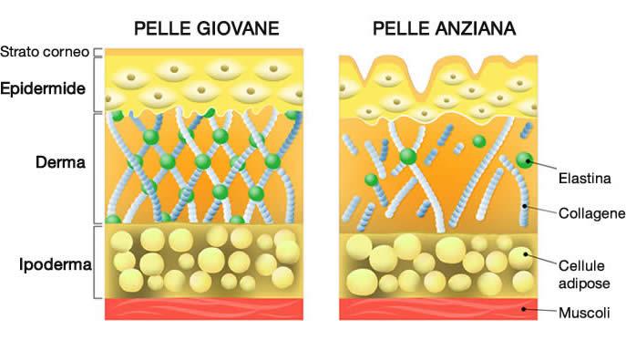 Le rughe: prevenzione e rimedi per curare la nostra pelle