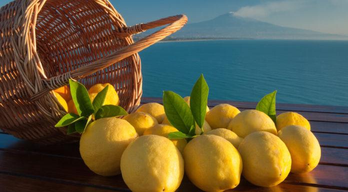 'Limoni per la ricerca' per sostenere la lotta ai tumori