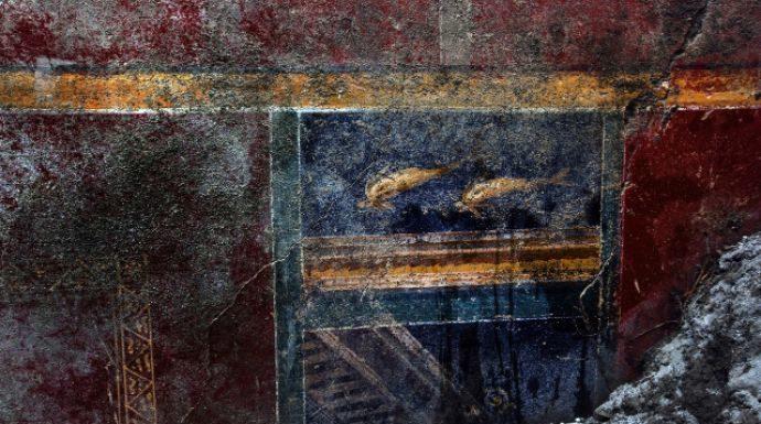 Le mille scoperte di Pompei a cavallo della storia, tra anfore e... delfini