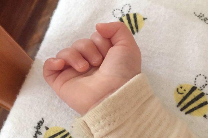 Trapianti, SOS donatore per salvare il piccolo Alessandro