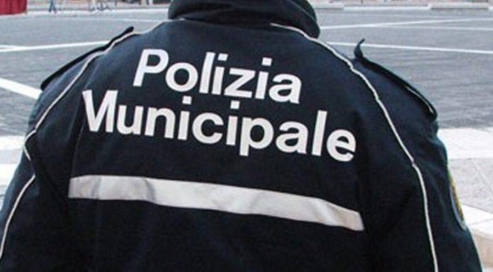 Napoli, intenso weekend di controlli: sequestri e multe