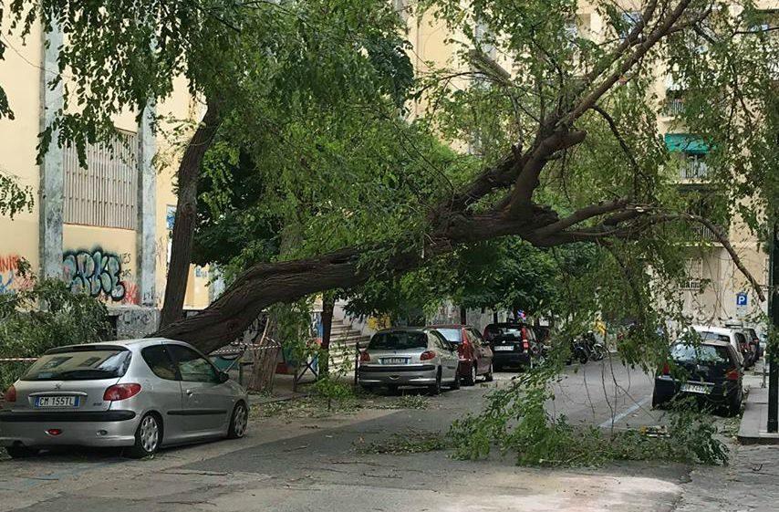 Albero si abbatte su auto nei pressi di una scuola per il forte vento a Napoli