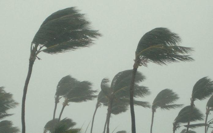 Maltempo a Salerno, il forte vento ha causato molti danni