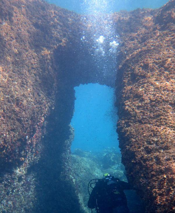 Napoli, progetto SeaRen: alla scoperta del mare e lotta all'inquinamento