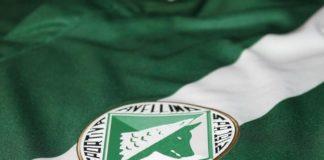 Avellino Calcio, addio serie B: Tar conferma esclusione