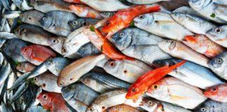 Pizzo al mercato ittico: 4 arresti e 2 carabinieri indagati