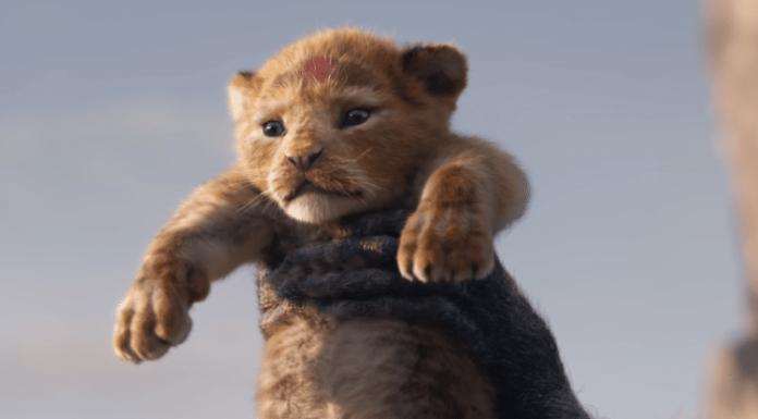 Cinema: ecco tutti i film in uscita ad agosto 2019