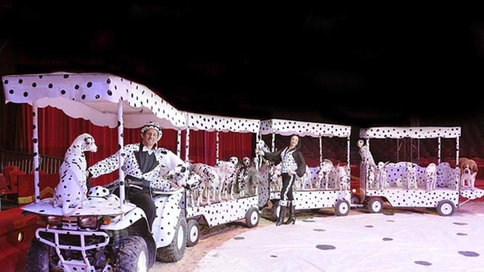 Natale a Napoli: a Fuorigrotta è arrivato il Circo Lidia Togni