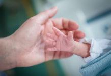 Epifania: il 6 gennaio alla Aou Vanvitelli arriva la Befana del prematuro