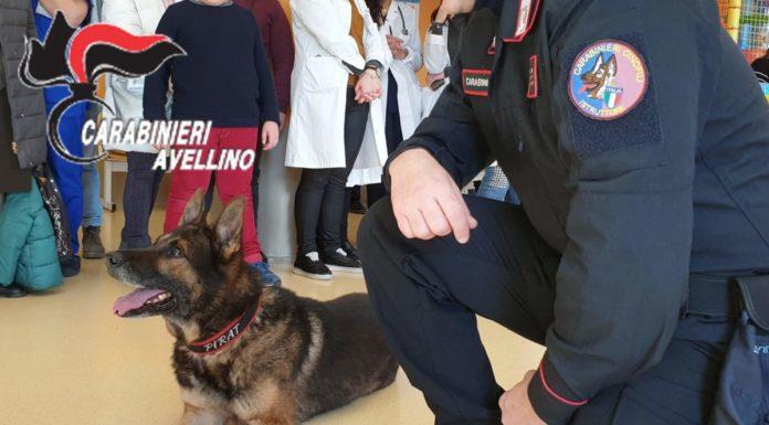 Avellino, Ospedale Moscati: Carabinieri visitano reparto di Pediatria col cane Pirat
