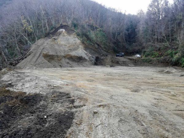 Sant'Anastasia: distrutto bosco di castagno per un vigneto sul Monte Somma