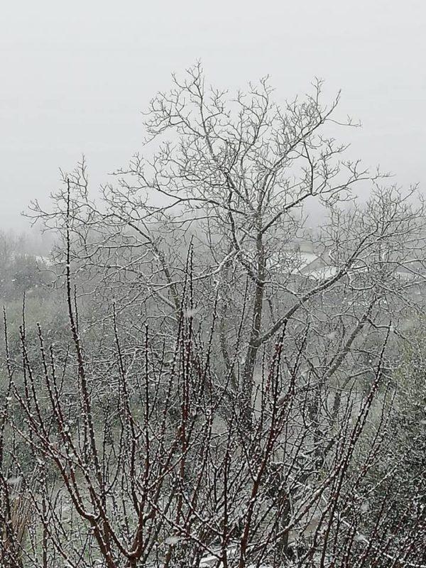 Maltempo in Campania: fiocchi di neve anche sulla statale Sannitica