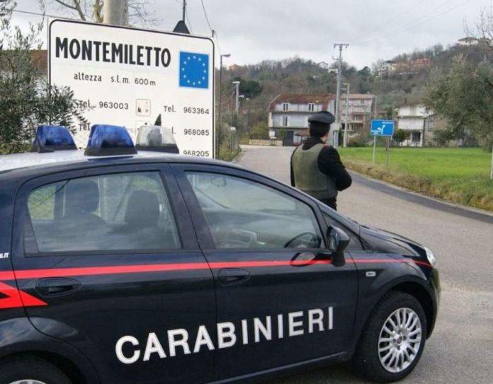 Cronaca di Avellino: Cane impiccato con un filo di nylon: 65enne denunciato