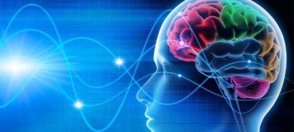 'Neuroni di estinzione': Ecco come il cervello combatte le nostre paure