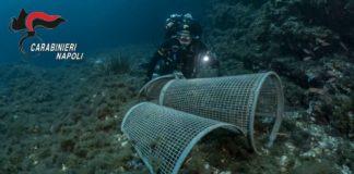 Capri, rifiuti sul fondale della Grotta azzurra: recuperati 10 kg di immondizia