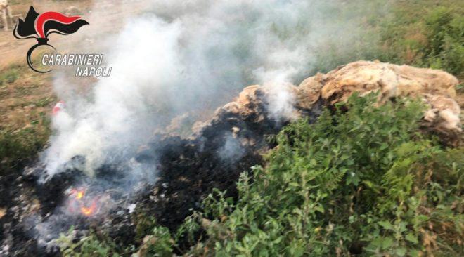 Giugliano, contrasto allo sversamento illegale di rifiuti