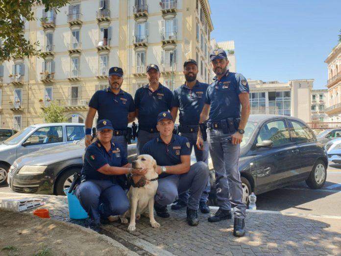 Labrador chiuso in auto sotto il sole, salvato dalla Polizia a Napoli (VIDEO)