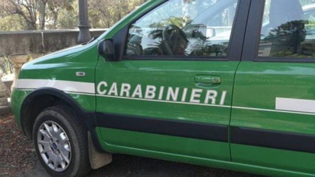 Marigliano, rifiuti e amianto in un'area comunale: sequestro dei Carabinieri