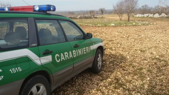 Caivano: la forestale sequestra un'officina abusiva