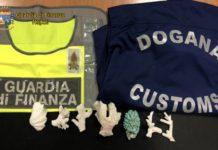 Guardia di Finanza: sequestro di specie protette all'aeroporto di Capodichino
