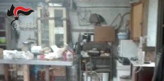 Marigliano, Forestali scoprono una macelleria clandestina: denunciato 67enne