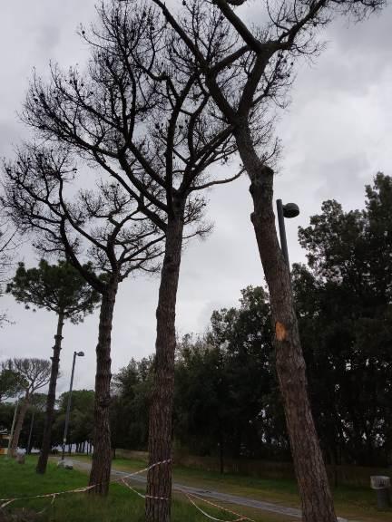 Posillipo, Parco Virgiliano: decisi gli interventi gli interventi
