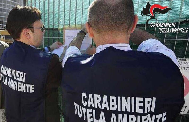 Melito di Napoli: Sequestrato mattatoio avicolo e denunciata una persona