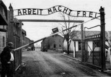"""Il 27 gennaio si celebra la """"Giornata della Memoria"""", per non dimenticare l'Olocausto"""