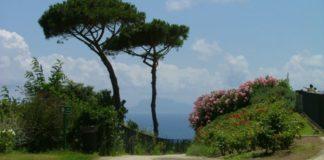 Parco Virgiliano: una raccolta firme per il rilancio dell'area verde di Posillipo