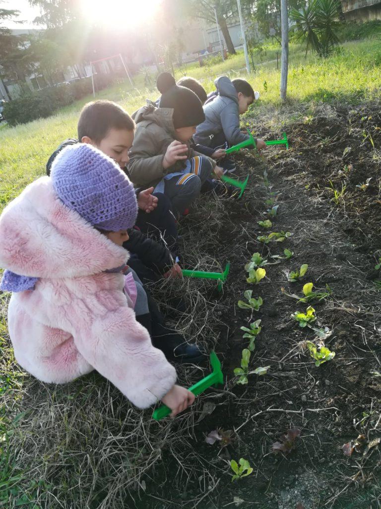 A Ponticelli si va a scuola di agricoltura sociale