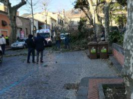 Cava de' Tirreni, albero precipita a causa del vento: morto un 65enne