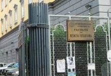 Ricerca&Sviluppo: un corso per i dottorati della Università Federico II