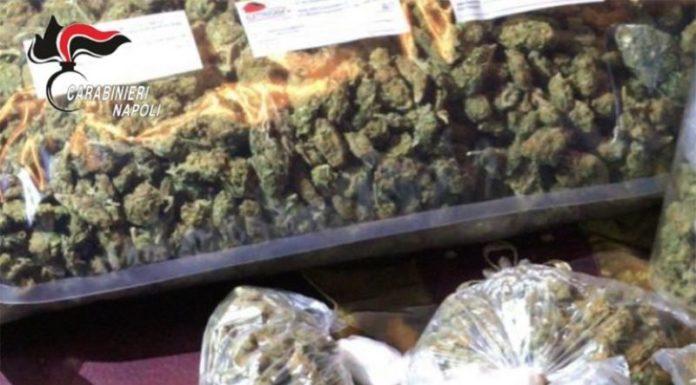 Torre Annunziata, aveva quasi 2 chili di marijuana in casa: arrestato un 52enne