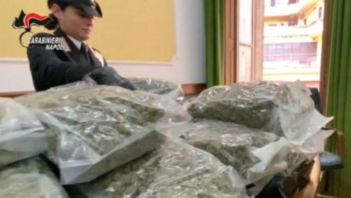 Carabinieri sequestrano 48 chili di marijuana: arrivavano dalla Penisola Iberica