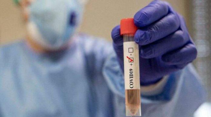 Coronavirus, quarto giorno senza positivi a Torre del Greco