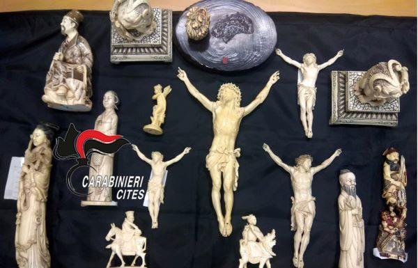 Torre del Greco, sculture in avorio ricavate da zanne di elefante: antiquario denunciato