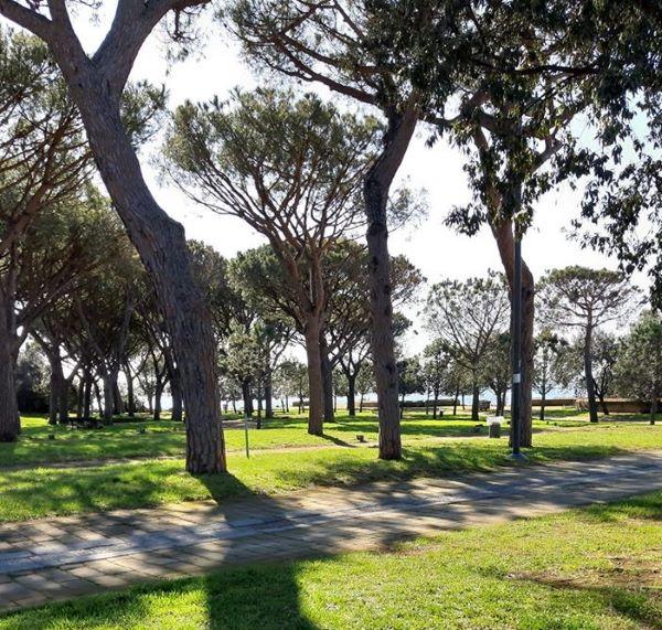 Parco Virgiliano, rilancio al rilento: non ancora utilizzati i fondi GreenCare