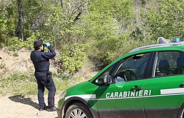 Reino, uomo fa lavori di saldatura vicino al bosco e provoca incendio: denunciato
