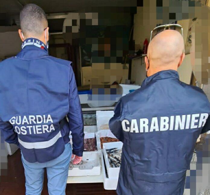 Benevento, sequestrati 30 kg di prodotti ittici senza tracciabilità